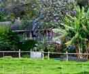 Makawao-Olinda